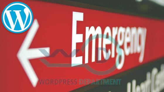 Start Web Development in WordPress